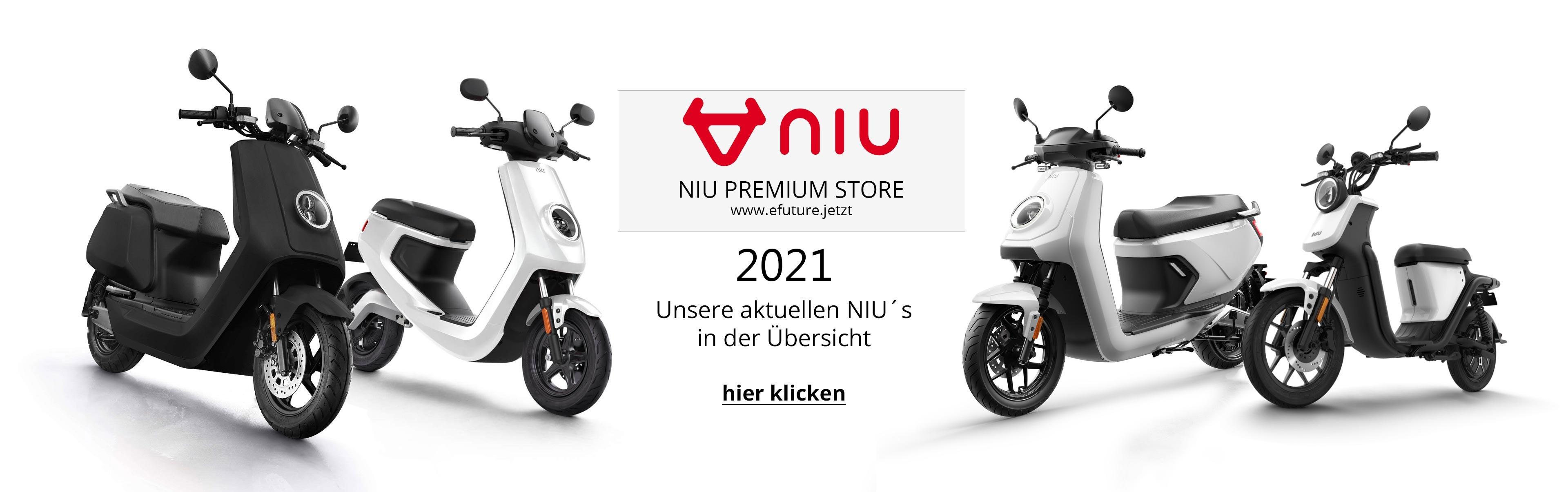 efuture_niu_modelle_uebersicht_2021